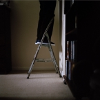 Ladder (From the Ten Years to 100 Series) - Bronagh Wilson